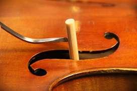 alma de violin madera de arce