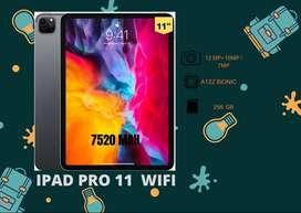 IPAD PRO 11 WIFI 256 GB
