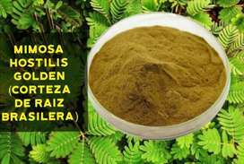 Mimosa Hostilis Golden (Corteza de Raíz Brasilera)