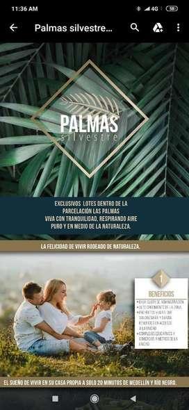 Espectaculares Lotes en Palmas-el Retiro
