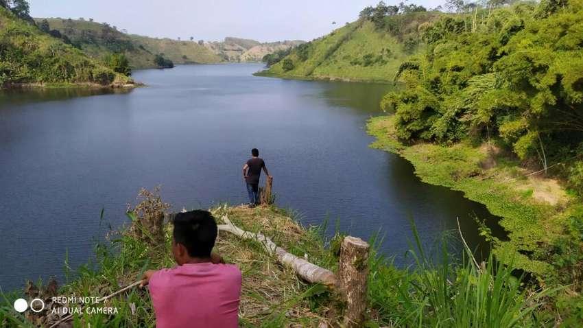Finca Hacienda 82 hectareas 0
