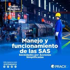 CURSO PRÁCTICO: MANEJO Y FUNCIONAMIENTO DE LAS SOCIEDADES POR ACCIONES SIMPLIFICADAS.