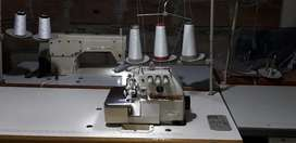 Máquina Plana y filetiadora