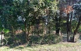 3 lotes en gral Rodríguez, 1 km acceso oeste, 300 mts ruta 5
