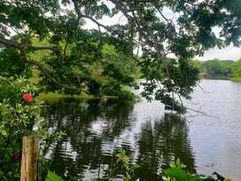 Hermoso Lote Sector Club Campestre-Frente a lago