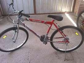 Bicicleta Tomaselli Nueva