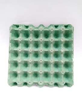 Cubetas de Huevos x 100