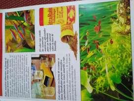 Vendo folletos de 16 hojas, introducción al cuidado de peces de acuario