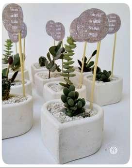 Souvenirs Macetas Geometricas con cactus/suculentas