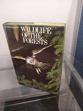 Wildlife of the forests