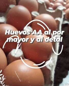 Huevo AA semicriollos