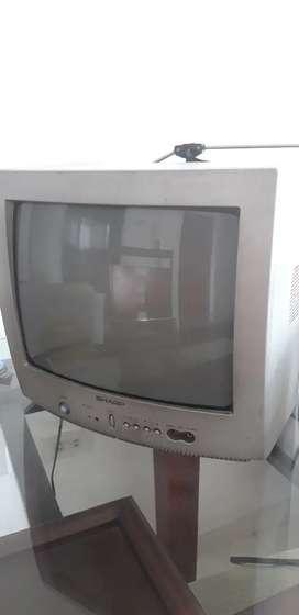 Se vende TV gordito. En buen estado