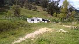 Vendo casa lote en Tibana, Boyacá