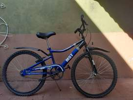 Bicicleta marca Viper para niños