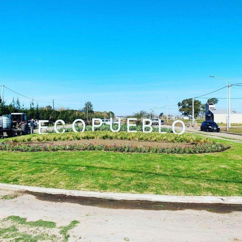 ECOPUEBLO. Barrio Abierto en ALVEAR. 0