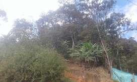 TERRENO (60000 m2) HERMOSO EN ZARUMA CON MINA DE ORO