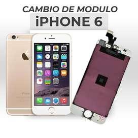 ¡Cambio de Modulo Iphone 6!