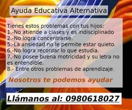 Ayuda educativa alternativa