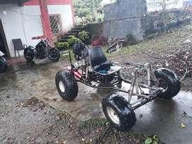 Proyecto buggy