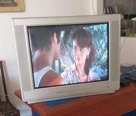 """Tv de 29"""" Phillips"""