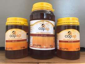 Miel Pura Certificada