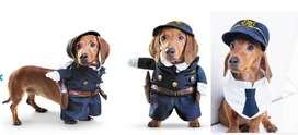 disfraz para perro raza pequeña usado