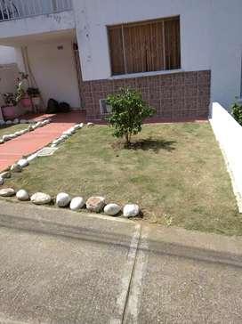 Servicio de jardinería,poda y mantenimientos