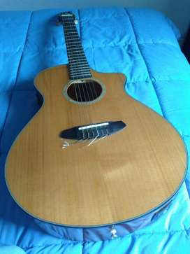 vendo guitarra breedlove