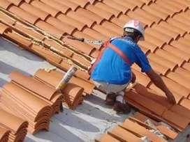 Colocación y reparación de tejas