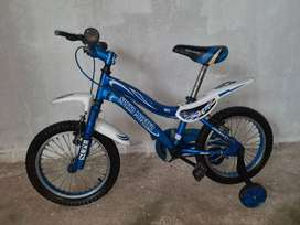 Bicicleta Rin 16 Para Niño Con Ruedas De Apoyo