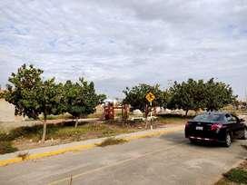Terreno en la Alameda Real - Los Portales (Lambayeque)