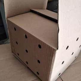 Vendo cajas para empacar huevos de codorniz pollitos