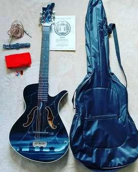 Guitarra semiacustica  con forro, 2 plumas, cable, correa, bayetilla y cuaderno de aprendizaje