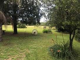 Se venden 8 hectareas de campo