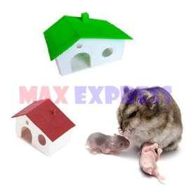 Casa para Hamster Jerbo Roedores