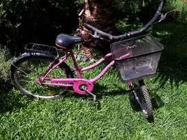 Bicicleta con canasto