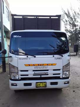 01 camion izuzu