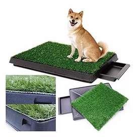 Baño para Mascotas con Grass