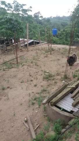 Vendo terreno  12× 25  derechos  de  pocecin