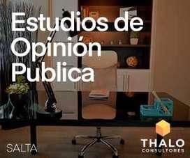 THALO Consultores - Encuestas online para estudios de mercado y sondeos de opinión pública