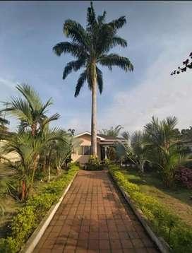 Vendo hermosa propiedad en Cochancay