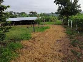 Finca 20 hectareas