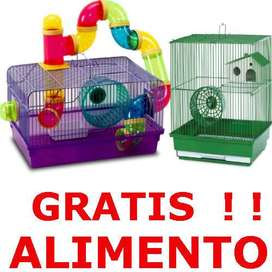 Jaula hamster rueda tubos alimento mascota GRATIS ALIMENTO