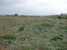 Terreno de 2.2 hectáreas al filo de Vía Panamericana