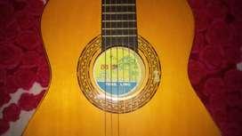 Guitarra acústica + estuche