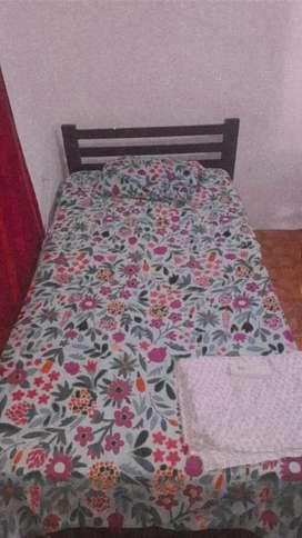 Cama de 1 cuerpo + tabla y colchón