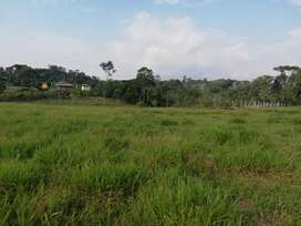 Vendo bonita finca de 56 hectáreas