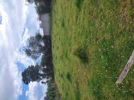 Vendo terreno 650m2 en Tambillo