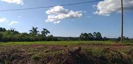 hermoso terreno 18x50 en acceso a GOBERNADOR LOPEZ sobre la ruta en L.N. Alem