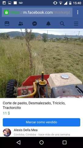 Corte de pasto por hectarea, Córdoba